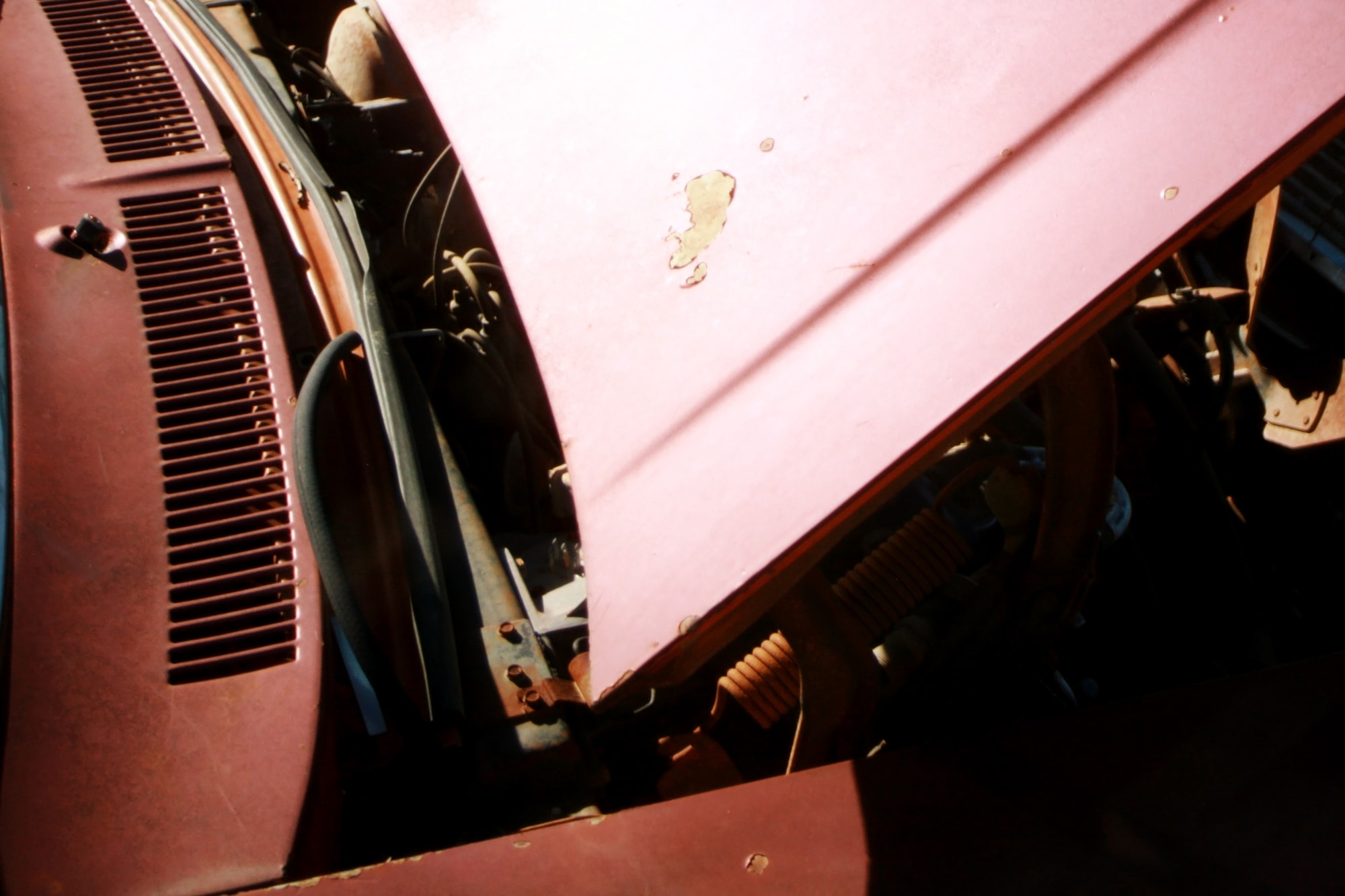 Picture from the salvage yard